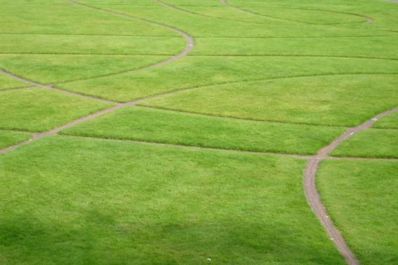 Rasen mit Streifen Dublin 2012-klein